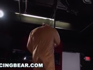 dancing bear sex pictures