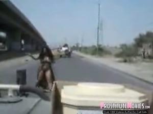 arabian hijab sex videos