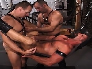 pigs fucking pussy