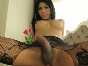 ladyboy ass movies