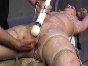 tied up for black breeding videos