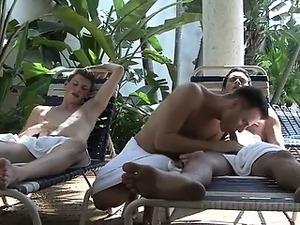 man having sex with pig pics