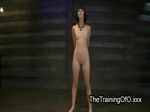 tied virgins free galleries