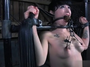free shemale porn movies bdsm