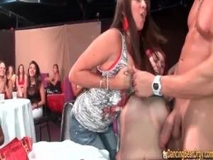 dancing bear porn free vids