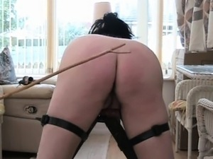 pussy spanking punishment galleries