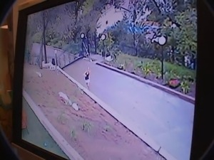 russian girl oral sex gangbang