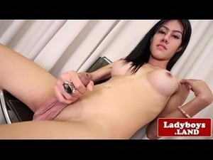 asian ladyboy picture galleries