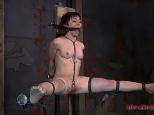 girl on girl anal torture
