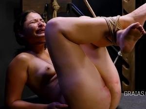 shemale lesbians punishers