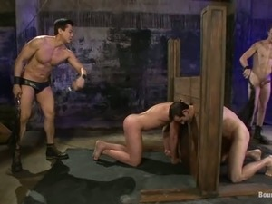 free porn videos shemale domination